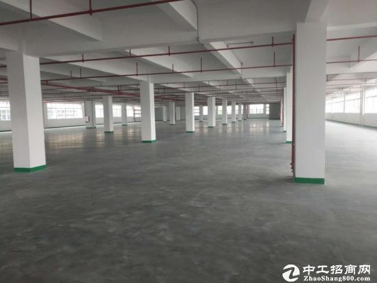 坪山中心新出原房东独院厂房1100平方分租