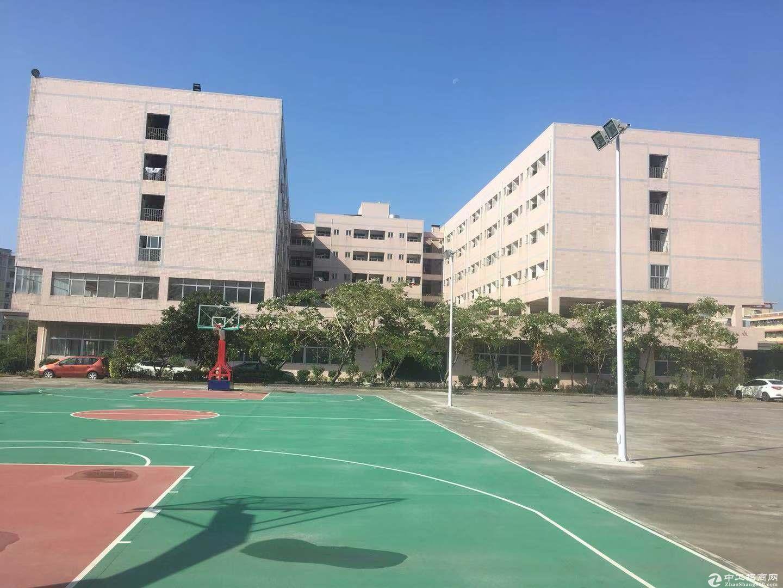 坑梓工业园厂房分租一楼1200平米 也可以600平起租  现成装修