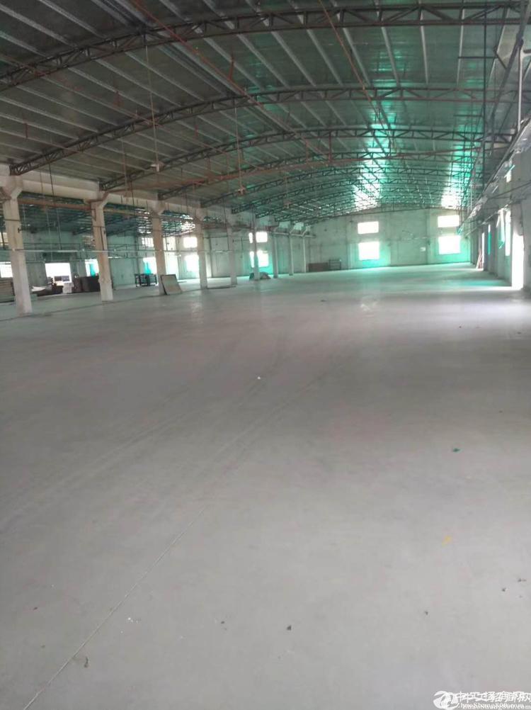 龙岗坪山第一高重工业钢构厂房37000万平出租滴水15米