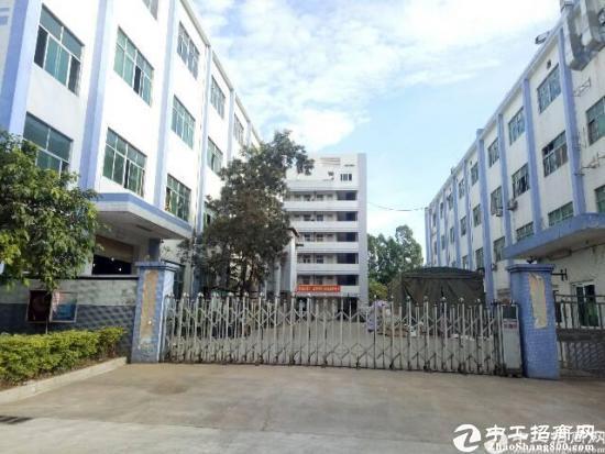 碧岭工业区原房东分租1至2楼2600平米红本产权 可办环评