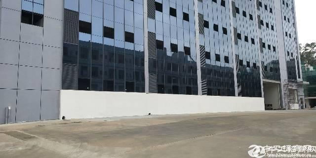 横岗单层面积4000平整栋厂房32000平出租