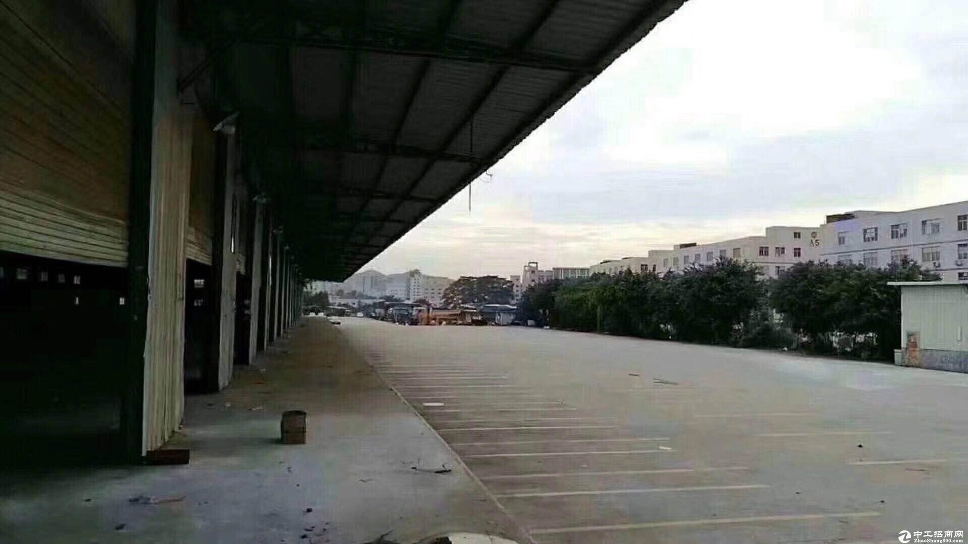 平湖海吉星附近新出大型物流园22000平方厂房招租