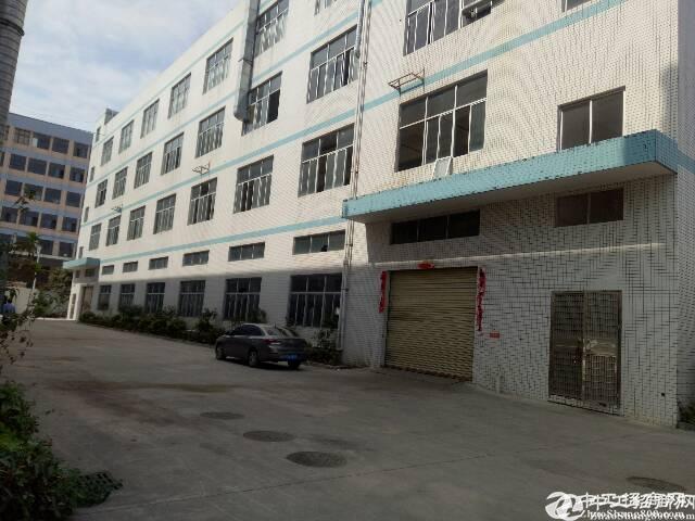 平湖新出一楼豪华装修1300平方出租