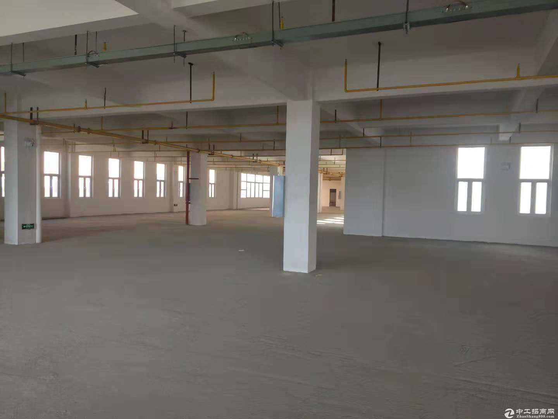 黄陂汉口北标准厂房2760平米仓库,整租11元每平含物业配套全,可分