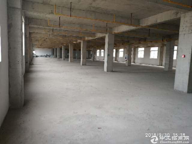 黄陂临空标准厂房3000平米,配套办公食堂宿舍,可仓储加工