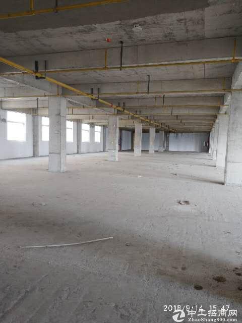 黄陂临空标准厂房1000平米,配套办公食堂宿舍,可仓储加工
