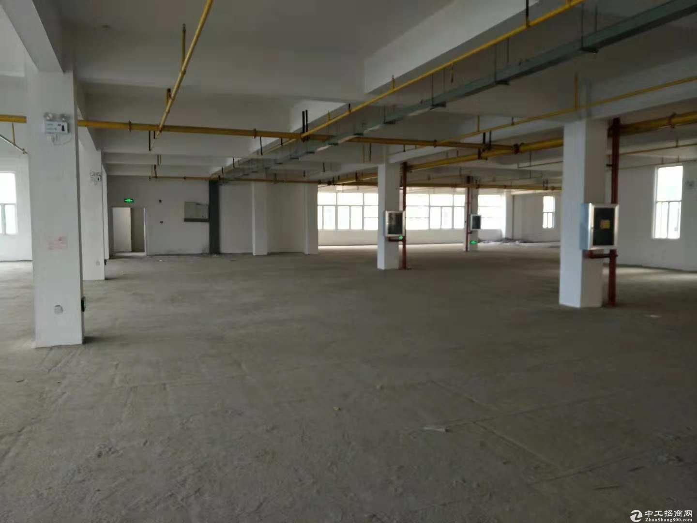 黄陂盘龙城标准厂房700平米,可轻工,仓储,配套食堂办公宿舍