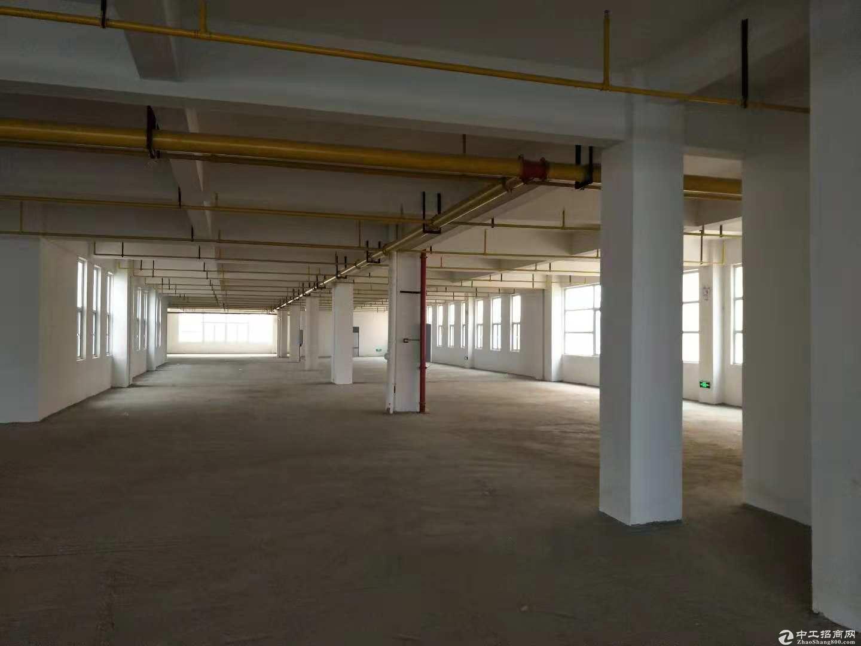 黄陂盘龙城标准厂房1600平米,可轻工,仓储,配套食堂办公宿舍