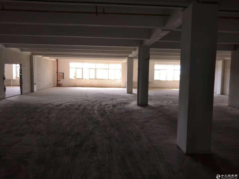 黄陂盘龙城标准厂房1200平米,可轻工,仓储,配套食堂办公宿舍