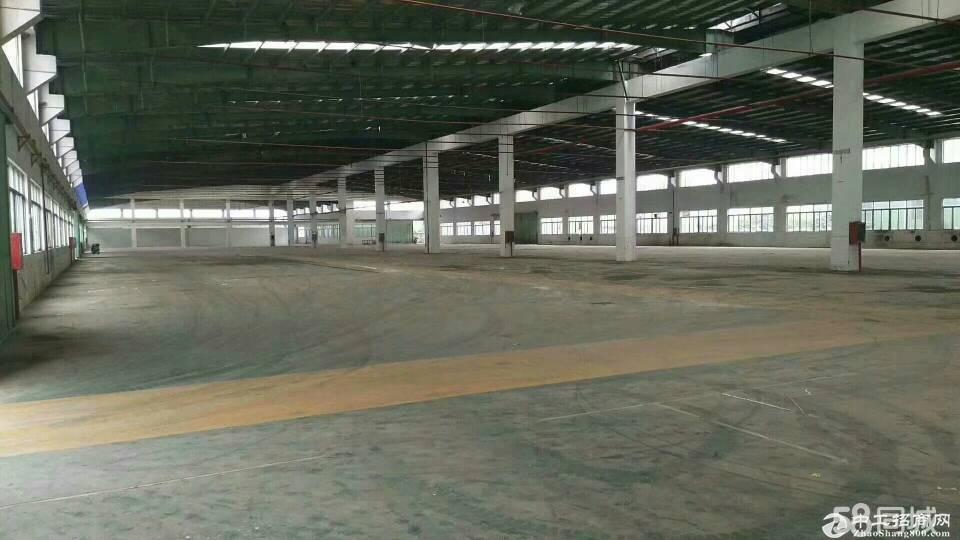 惠阳沙田单一层独院钢构厂房13180平方带独立办公室证件齐全