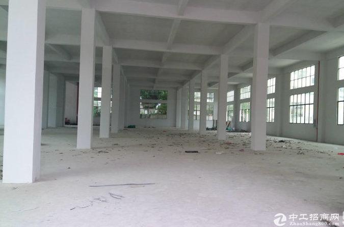 横岗(龙华大浪)新出独院厂房5000平方厂房招租