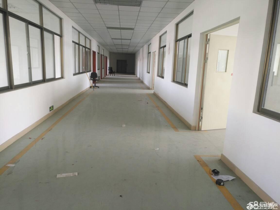 龙岗区平湖华南城旁原房东带装修四楼1500平米出租