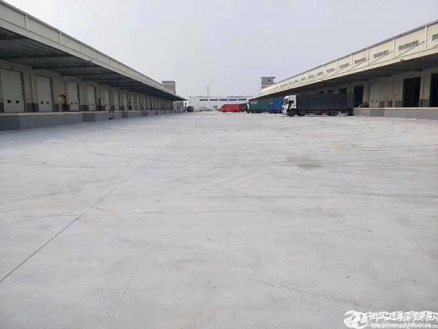 横岗红棉路附近标准物流仓库2000平方出租可分租