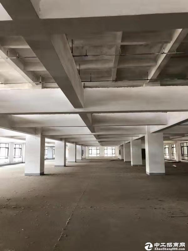 [汉阳厂房] 黄金口百威路附近,智慧产业园一层厂房800-2