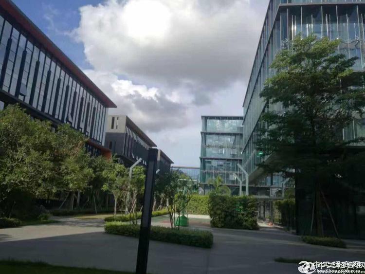 深圳大型工业园区红本50000平方出租、100平方起
