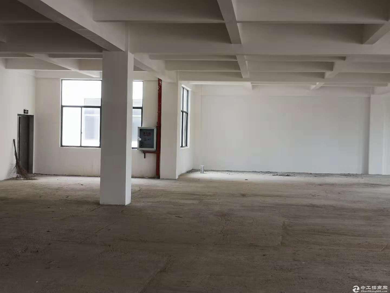阳逻开发区标准工业厂房2000平米,配套办公宿舍食堂