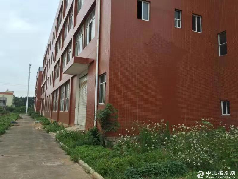 阳逻开发区标准厂房1700平米,可生产加工仓储,独栋,独门独院