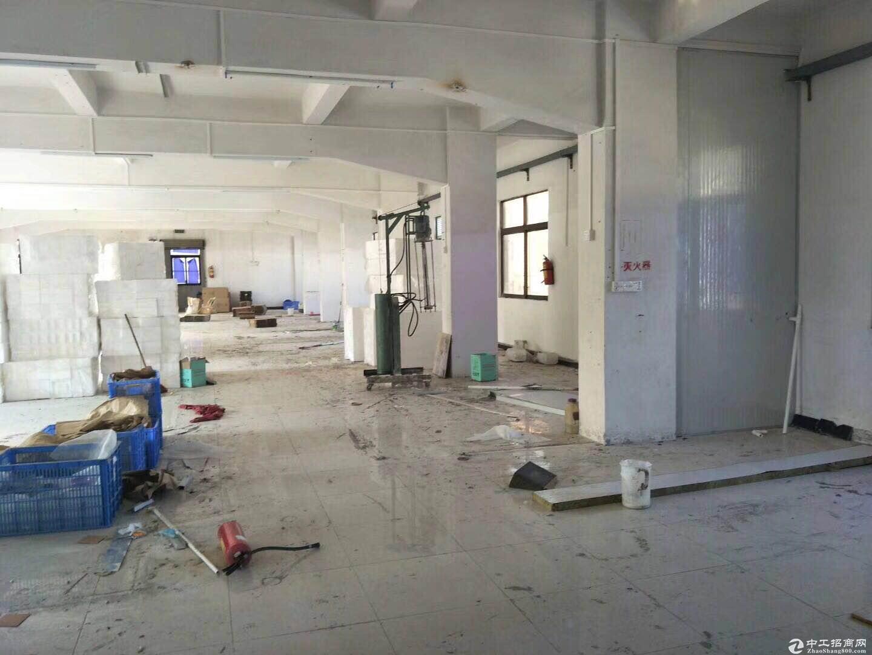 蓬江区荷塘镇1850方厂房出租 带办公室 可分租