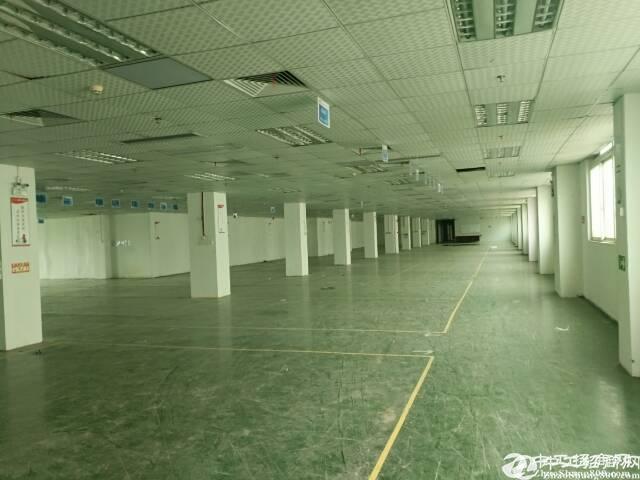 石岩原房东厂房直租楼上豪华装修4300平方