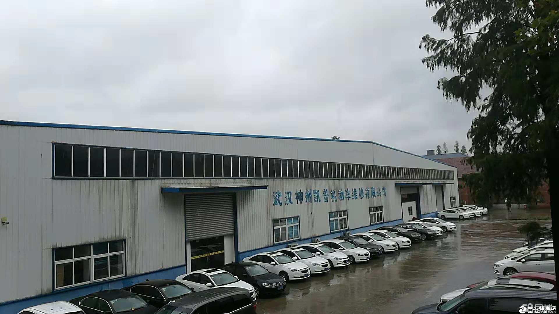江岸百步亭1200平厂库低价出租