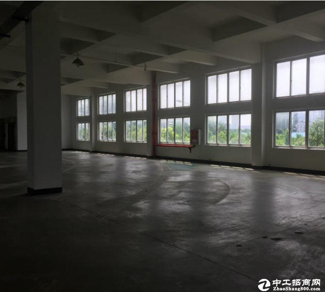 武昌区1200平米框架厂房一层,高6米招租
