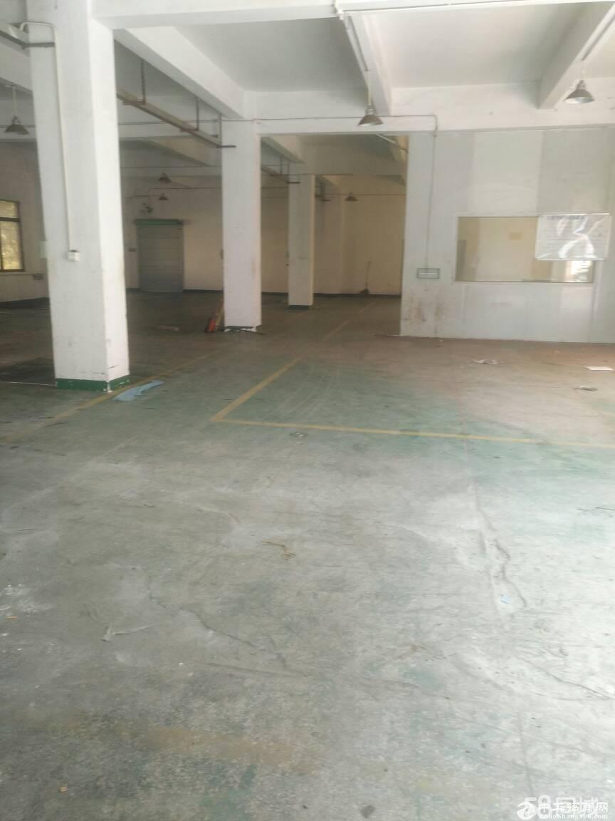 龙岗区平湖富民工业园一楼240平方标准厂房出租