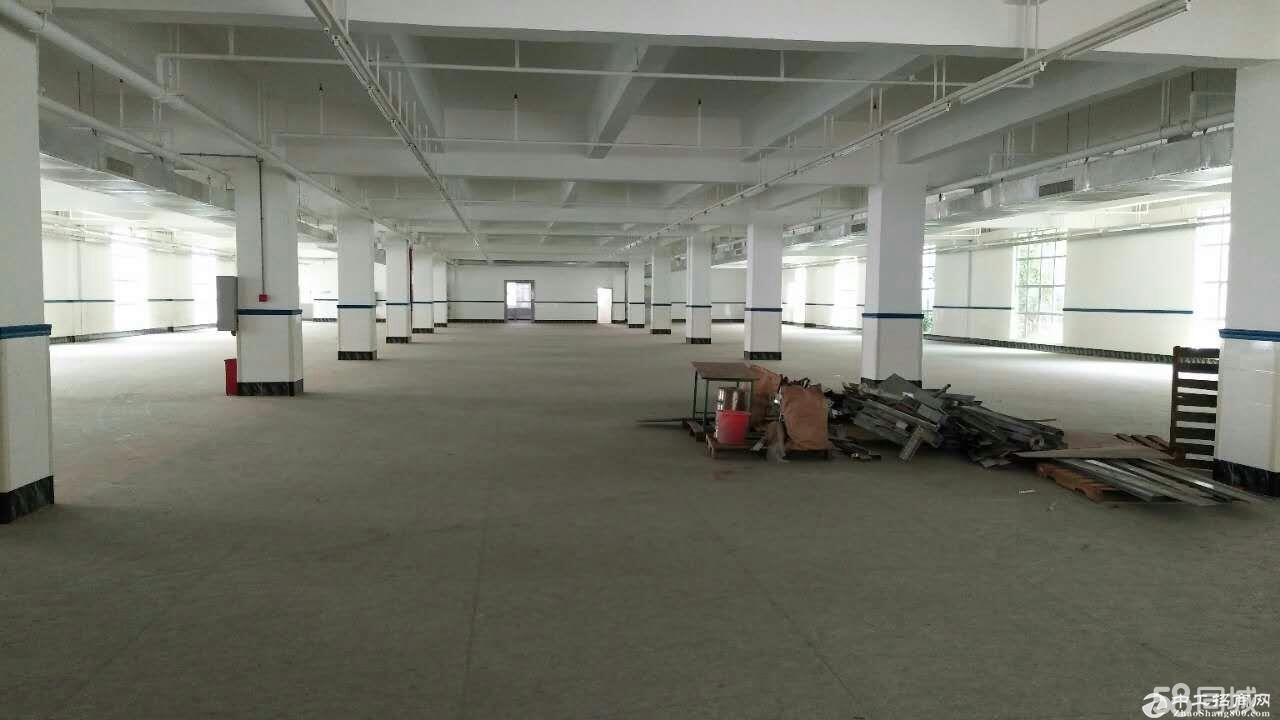 平湖富民工业区11000平方花园式独院厂房招租