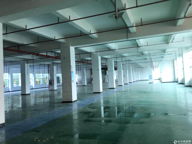 平湖华南城附近新出原房东带装修2楼1500平方厂房出租