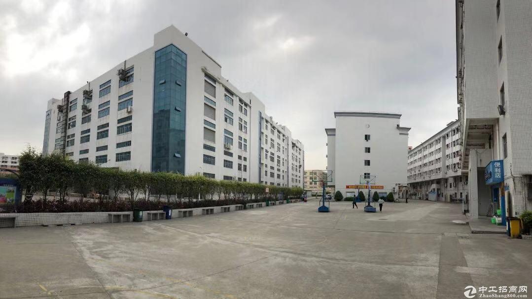 出租松岗天虹附近原房东大型工业园区红本独院厂房10平方可分栋出租