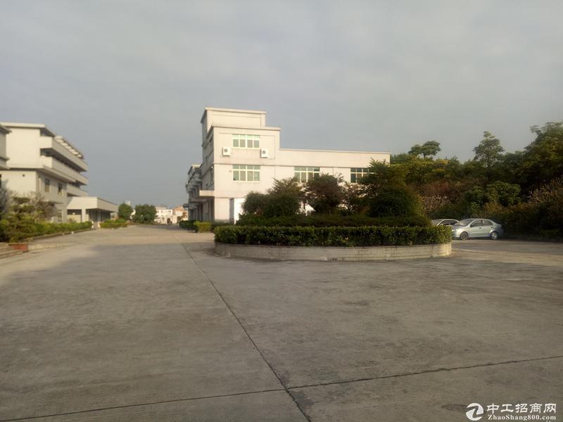 可办环评,新华工业区3000平标准独栋厂房出租