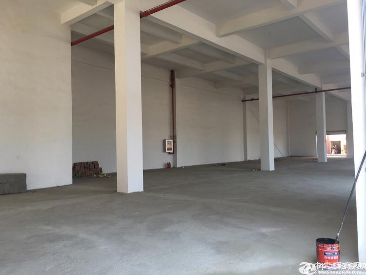 东西湖厂房]实价出租,高桥仓库库1600平,行业不限