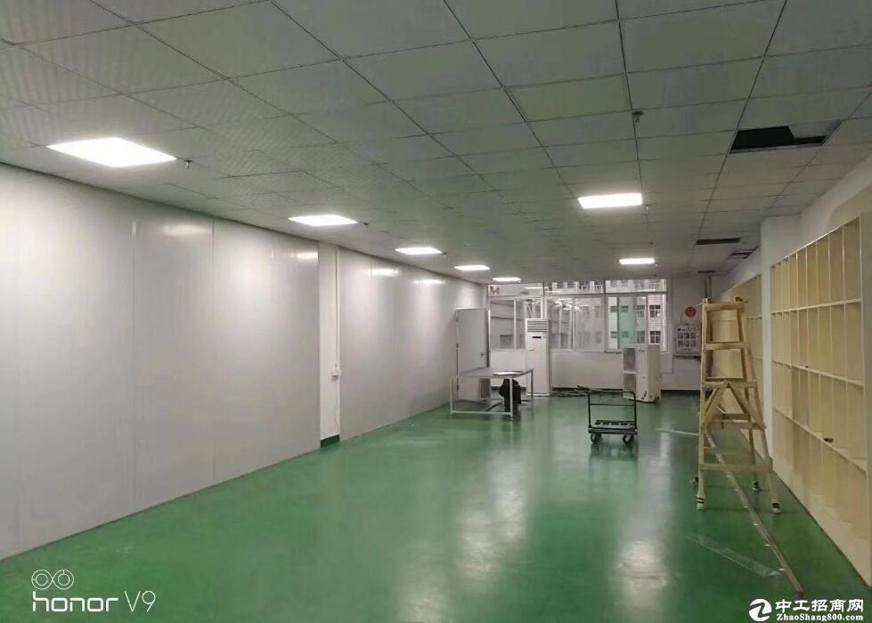 阳逻文昌大道1000平米特价厂房医疗器械