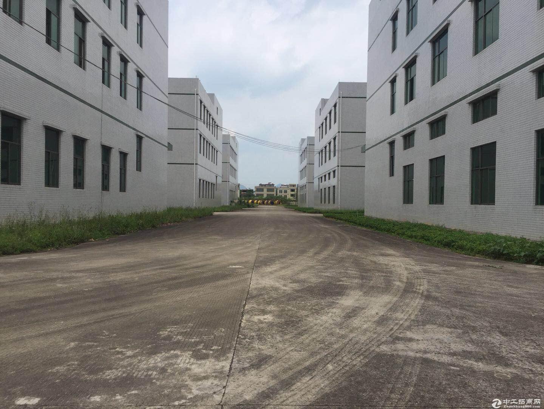 标准厂房1-3层带消防喷淋11000方出租