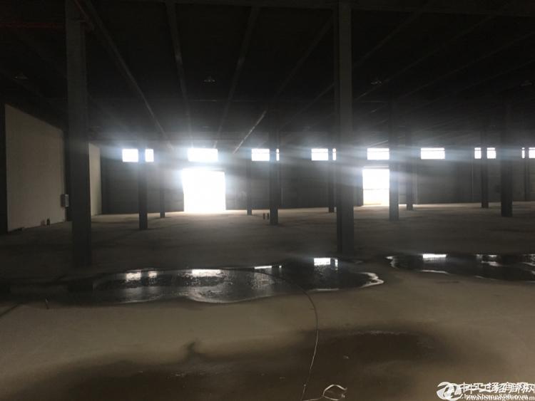[东西湖万博app官方下载] 吴家山全新物流仓储港10000平