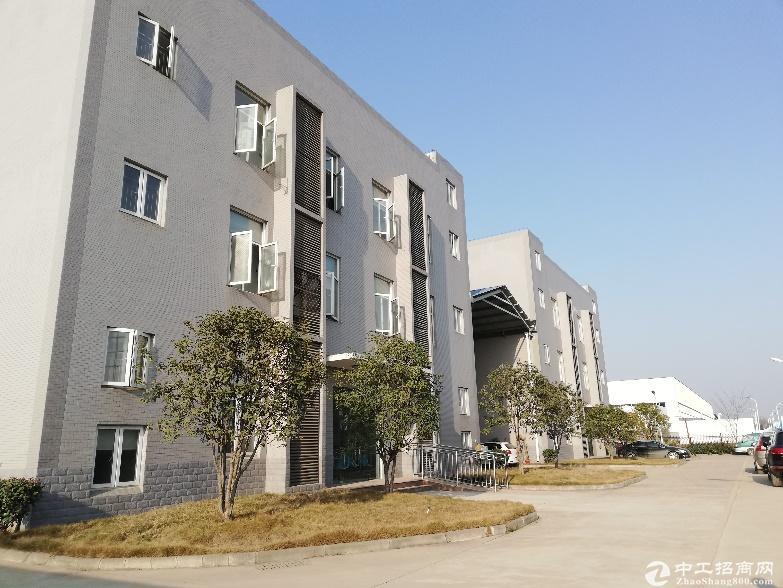 汉阳标准厂房4800平米,配套食堂宿舍办公,可分租