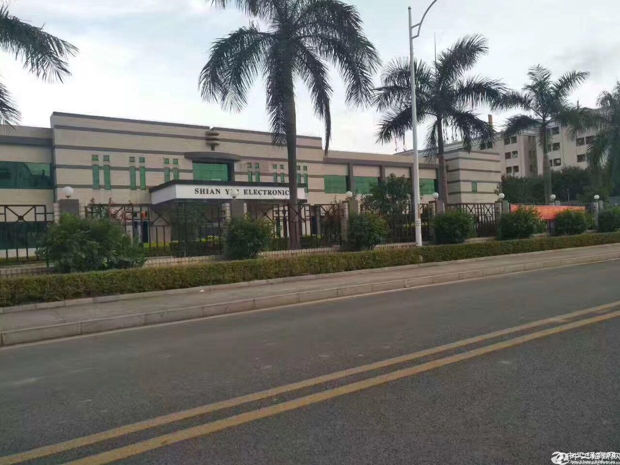 万江国有独院16000平方厂房出售
