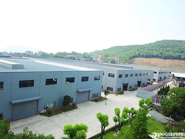 [江夏厂房] 金口江南汽车产业园带航车轨道16米高厂