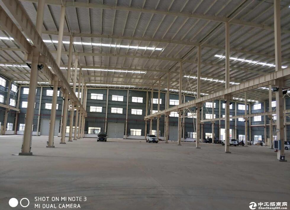 [蔡甸厂房] 新建标准钢构厂房10000平整体出租
