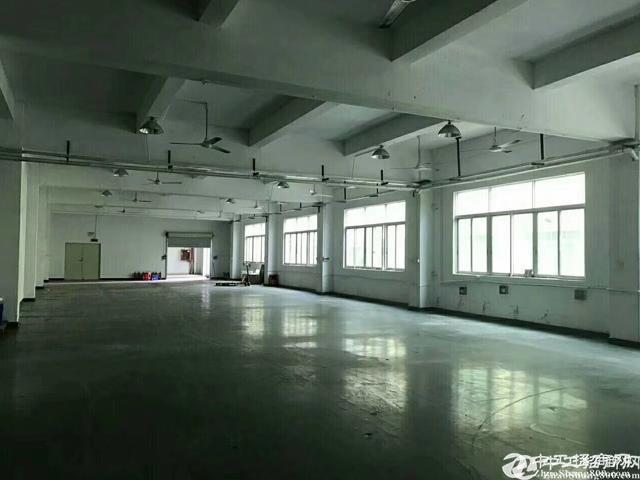 观澜福民原房东工业园新出1135平方带精装修