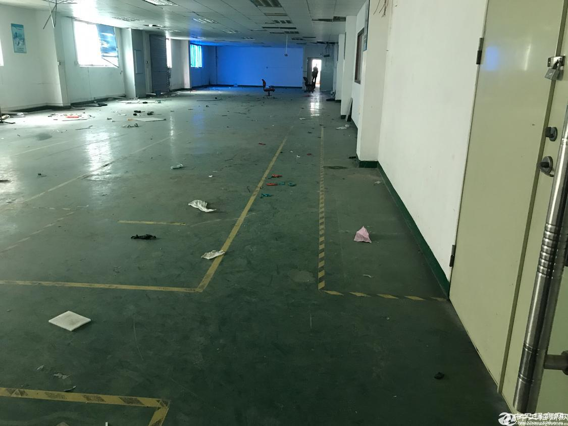 福永塘尾地铁口新出楼上335米带装修免转让费出租