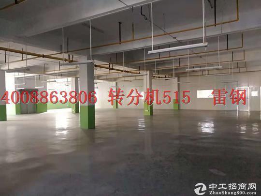 东西湖5800独栋5层可分层短长出租,办公,生产厂房,创库