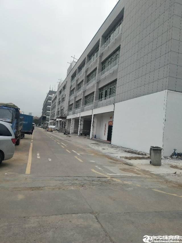西丽留仙大道6000平米 一楼招租可做4s店