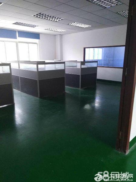 龙岗龙东新出1100平二楼精装修厂房,无转让可分租 一楼600