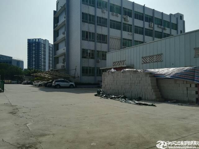 石岩科技园区,新出一楼1300平方厂房出租