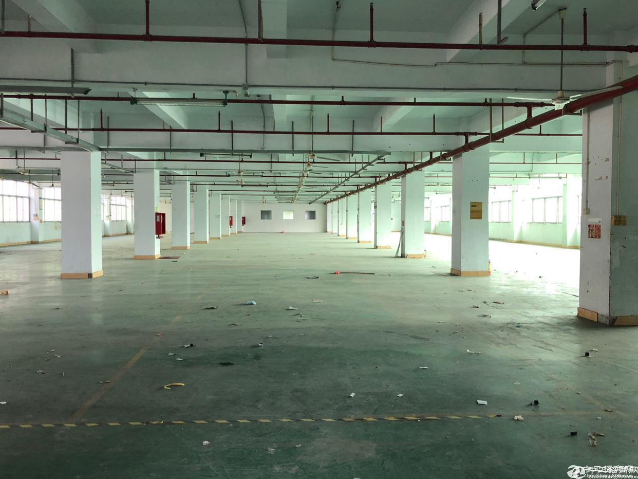 石岩塘头宏发科技园新出楼上2600平精装厂房分租