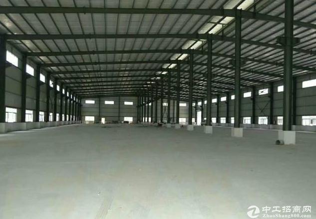 新出靓盘 石龙5000平方独院钢构厂房