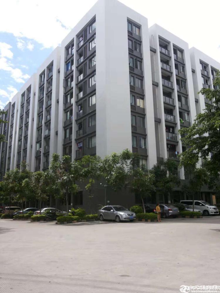 光明新区大型园区原房东红本独栋13600平招租
