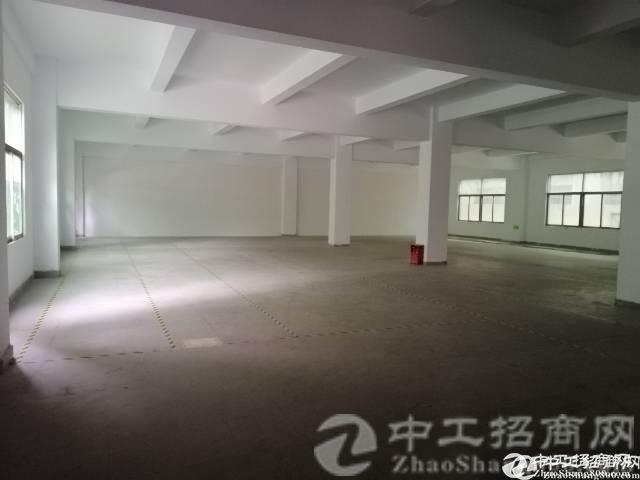 靠近大路边,有房产证,番禺区新出标准厂房800平米