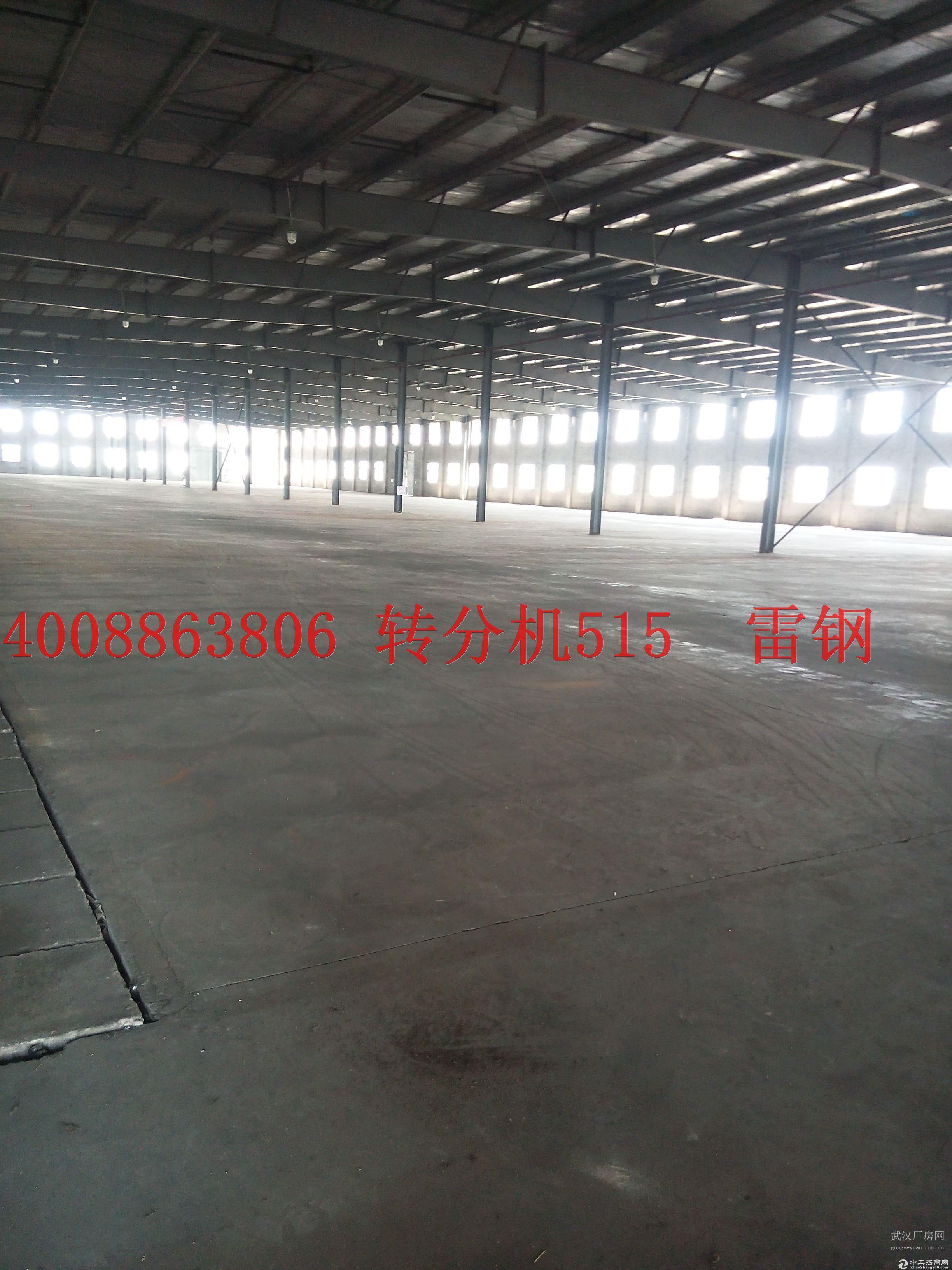 东西湖区东风大道 单一层钢结构1000平到40000平出租-图2