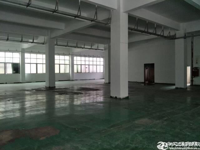 石岩南光高速附近500平方厂房招租租层高6米